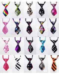 Cravate pour chien et pour chat