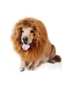 Déguisement perruque de Lion pour chien